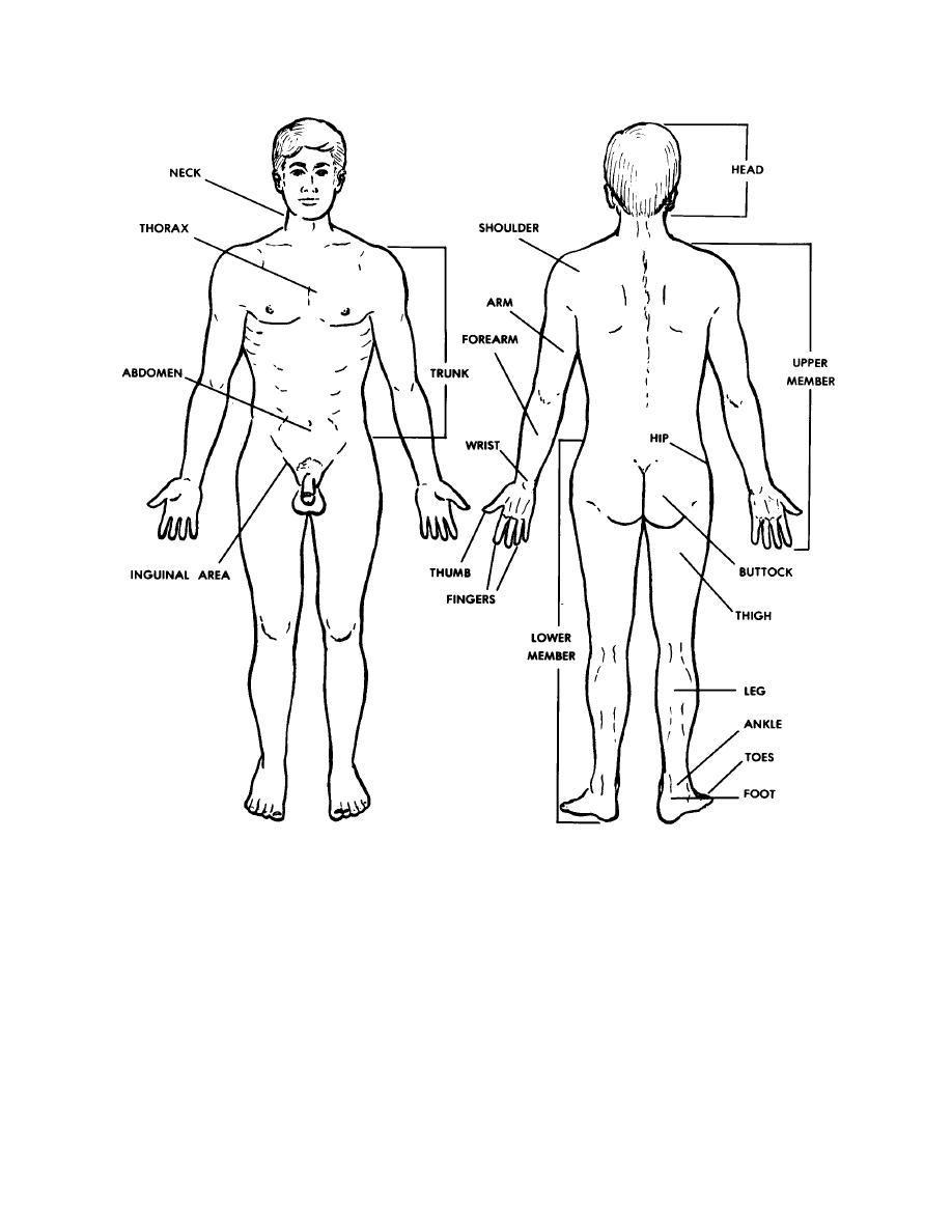 Body Part Description Body Parts Coloring Pages For