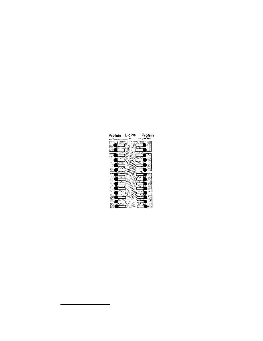 tekla structures 19 training manual pdf
